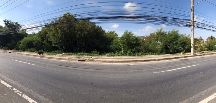 เช่าที่ดิน Land Borommaratchachonnani Road
