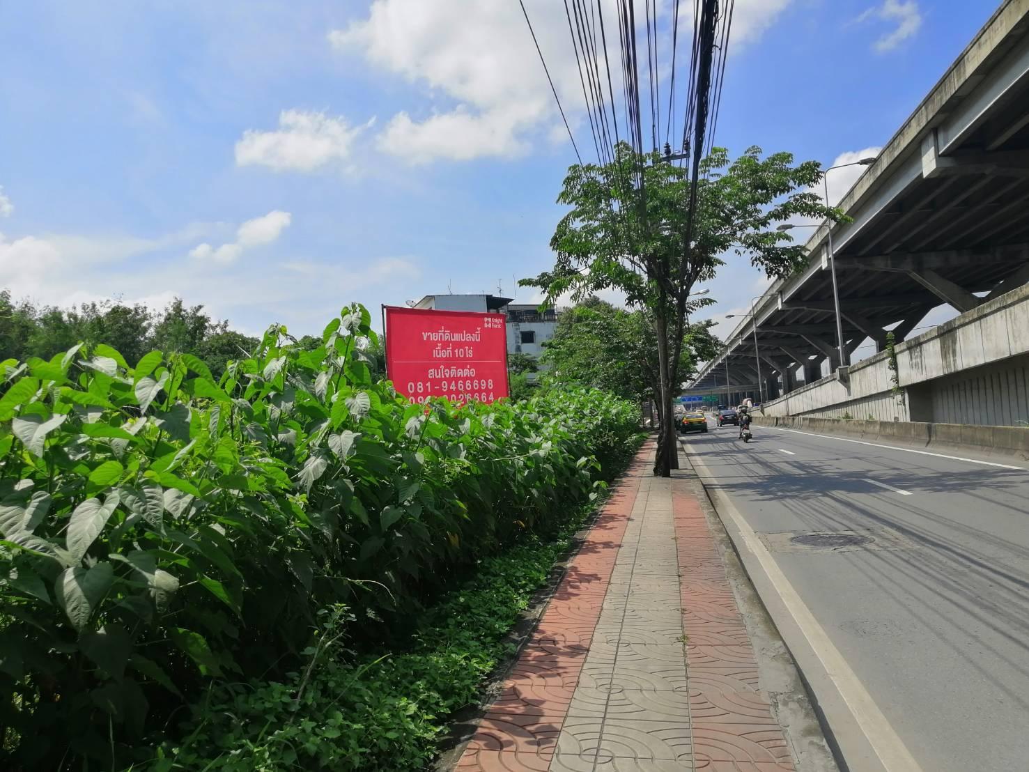 ขายที่ดิน ดอนเมือง Bangkok